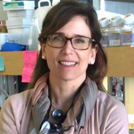 Dr. Jacqueline Quandt Radical approach limits disease progression in experimental models of MS