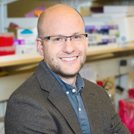 Congratulations to Dr. Steidl on being selected as the recipient of a 2017 ICR Early Career Award in Cancer